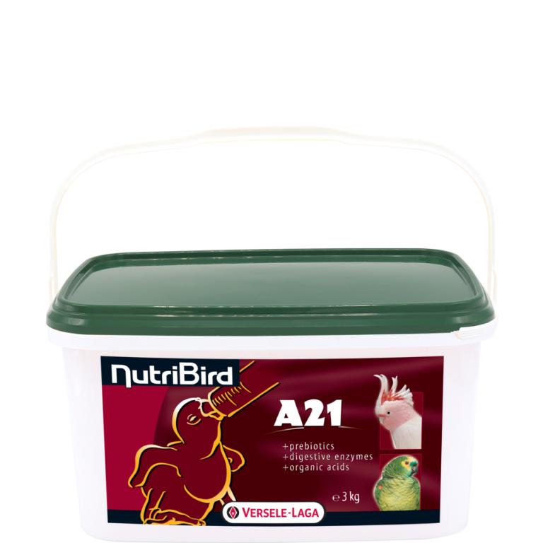 A21-3kg