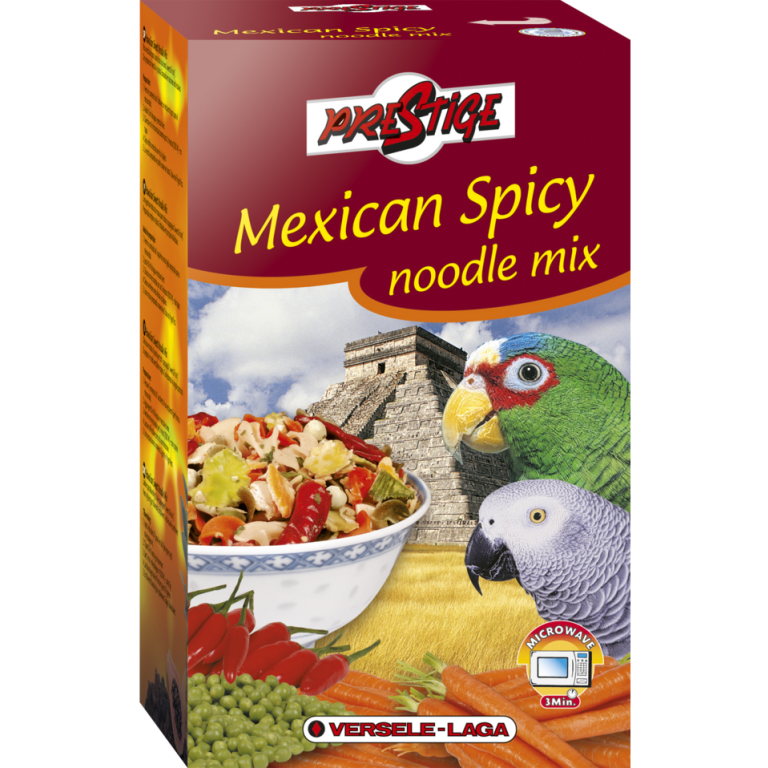 Mexican-Spicy-Noodle-mix