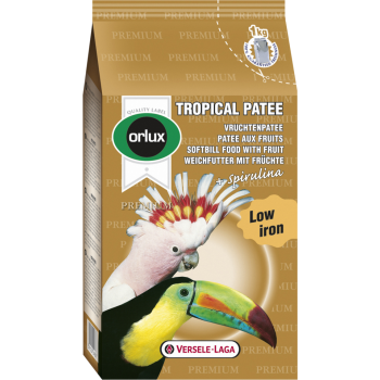 Tropical-Patee