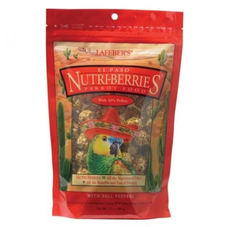Nutri-Berries-El-Paso-Parrot