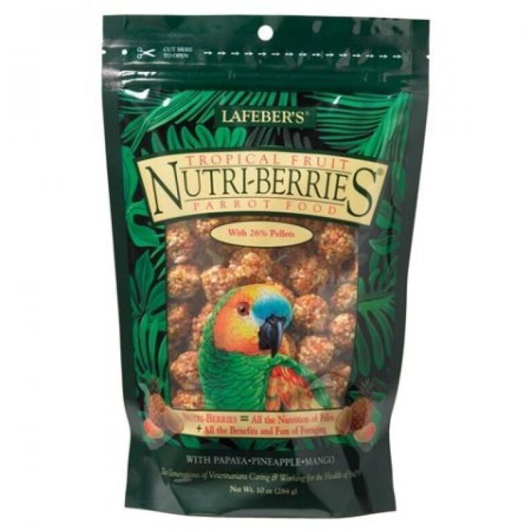 Nutri-Berries-Tropical-Fruit-Parrot