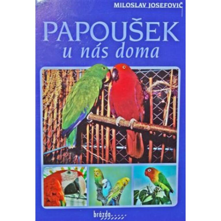 Papousek-u-nas-doma