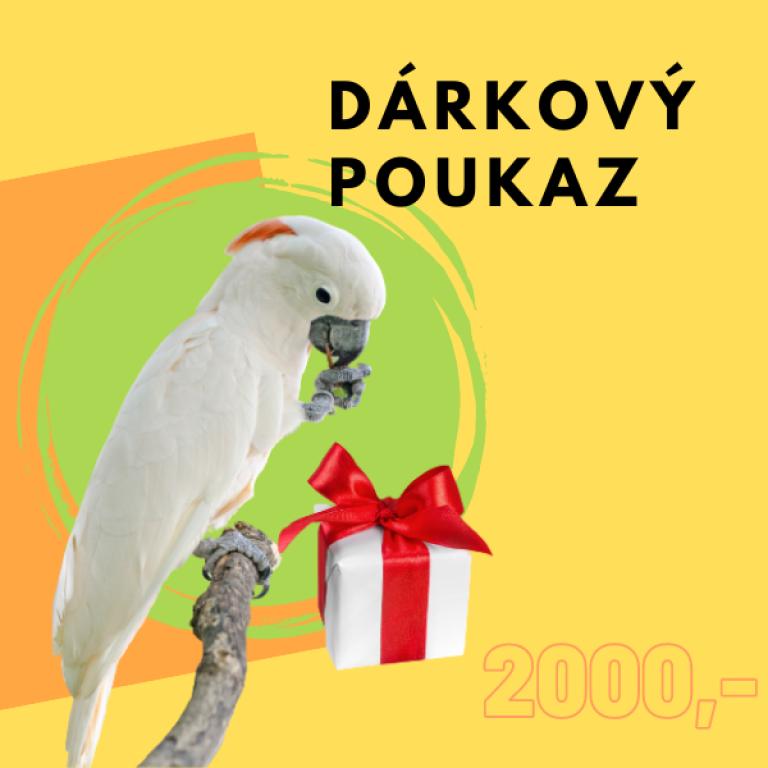 AKCE-2000